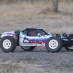 <strong class='magnific-title'>Pro-Line PRO-2 Buggy</strong> Todd
